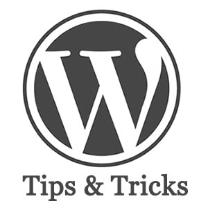 wordpress-tips-tricks-childs-theme